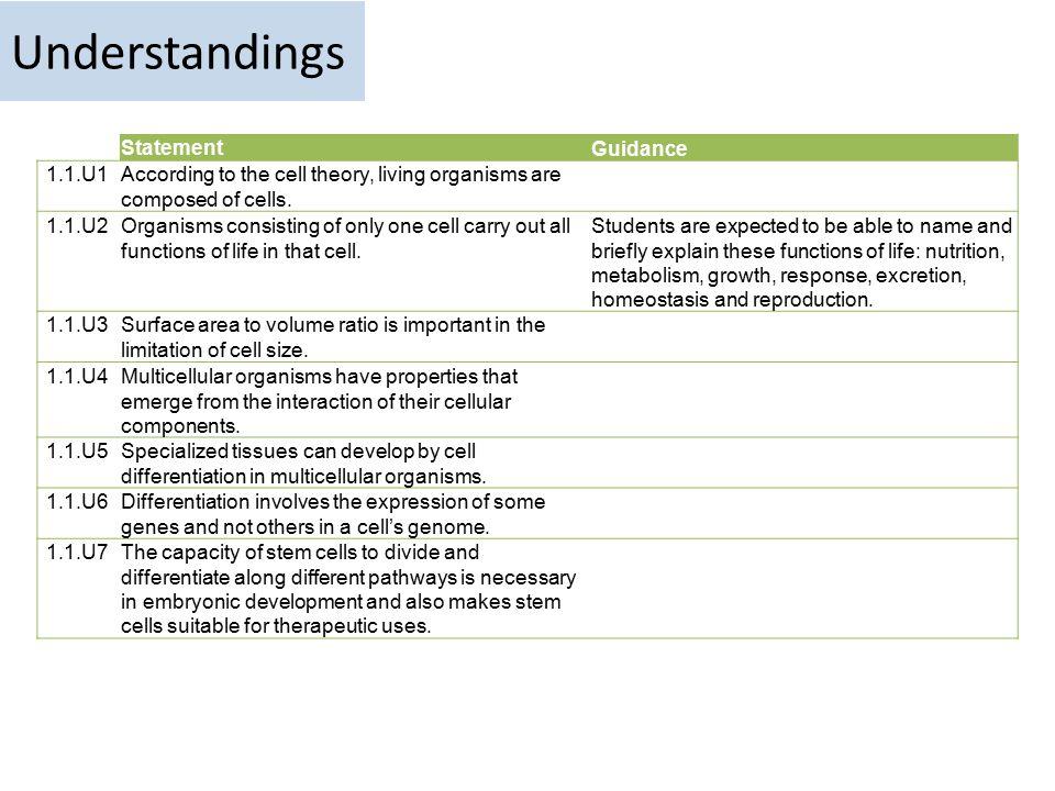Understandings Statement Guidance 1.1.U1