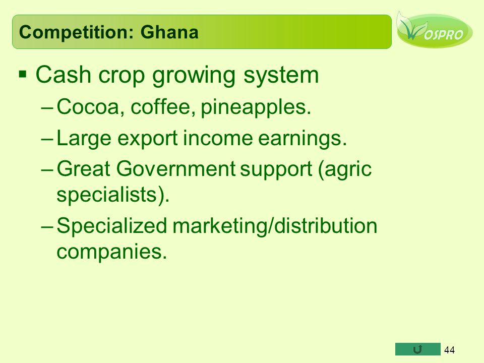 Cash crop growing system