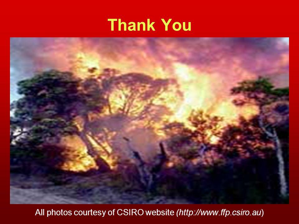 All photos courtesy of CSIRO website (http://www.ffp.csiro.au)