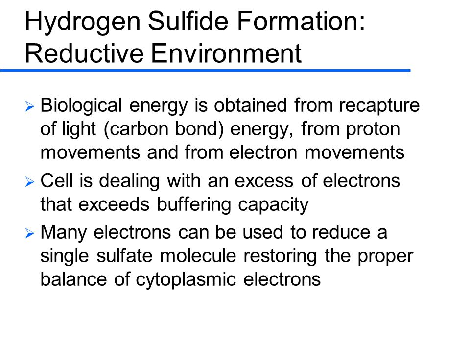 Hydrogen Sulfide Formation: Reductive Environment