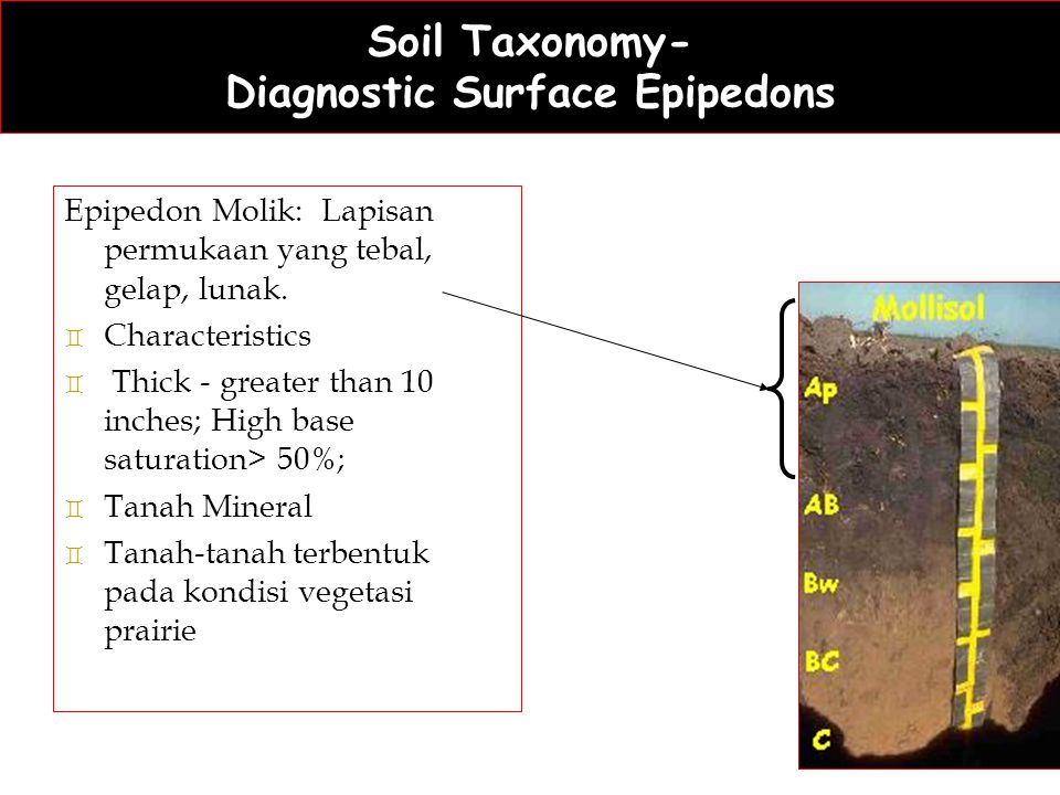Soil Taxonomy- Diagnostic Surface Epipedons