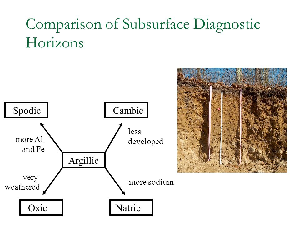 Comparison of Subsurface Diagnostic Horizons
