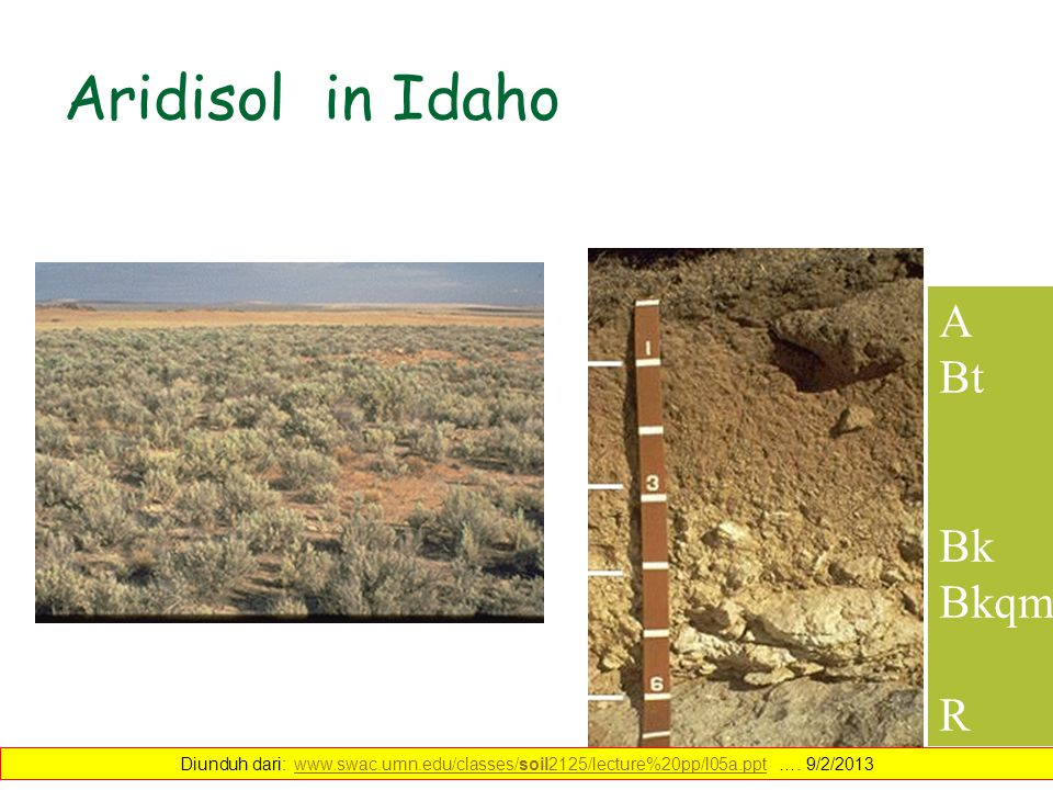 Aridisol in Idaho A Bt Bk Bkqm R