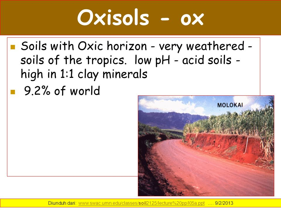 Oxisols - ox Soils with Oxic horizon - very weathered - soils of the tropics. low pH - acid soils - high in 1:1 clay minerals.