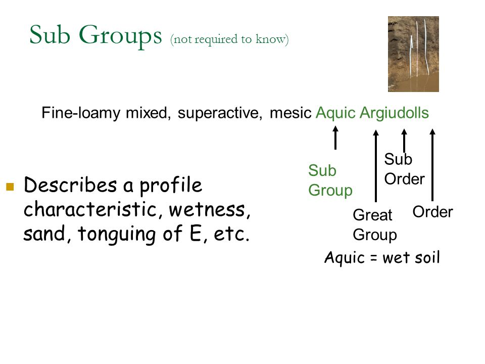 Sub Groups (not required to know)