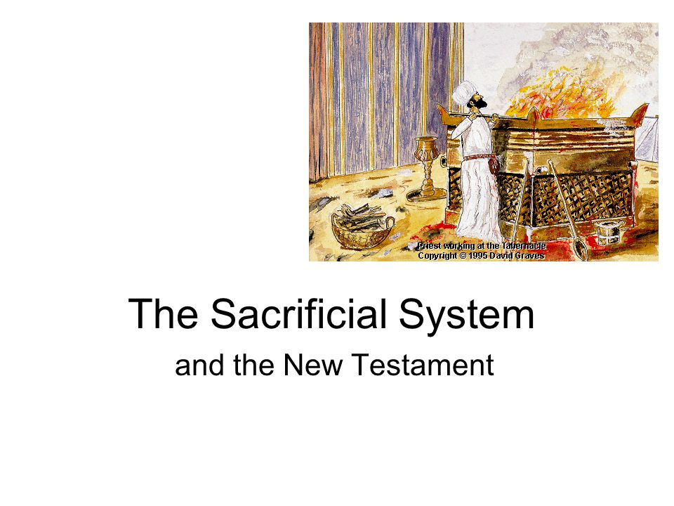 The Sacrificial System