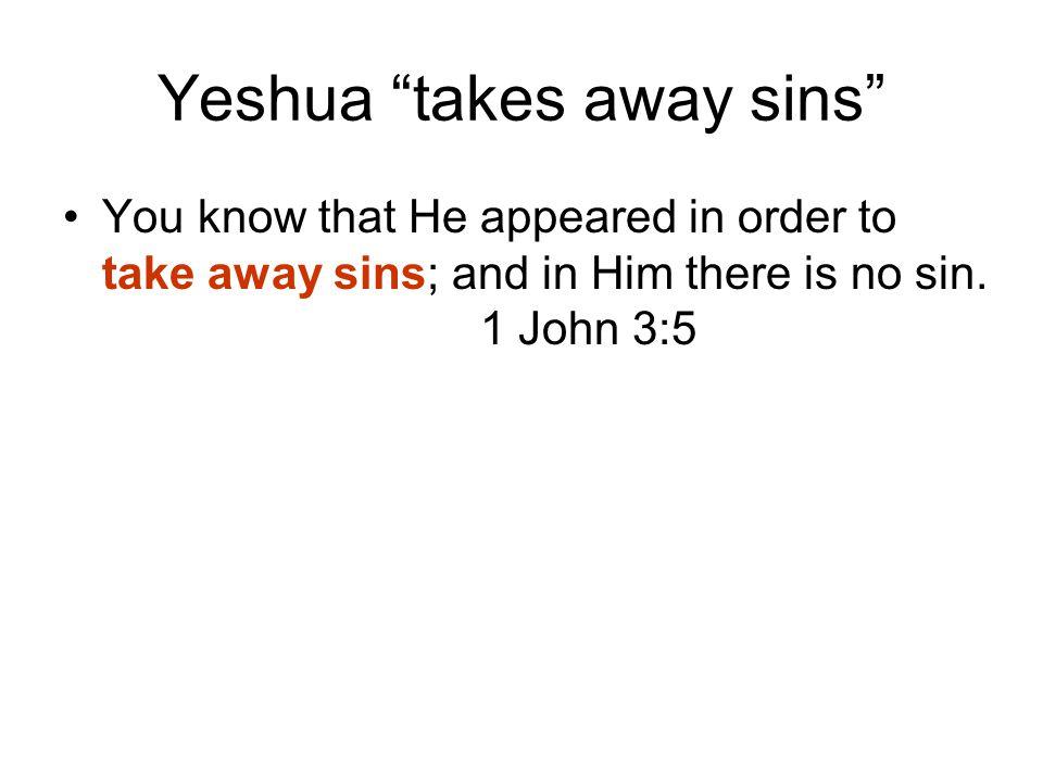 Yeshua takes away sins