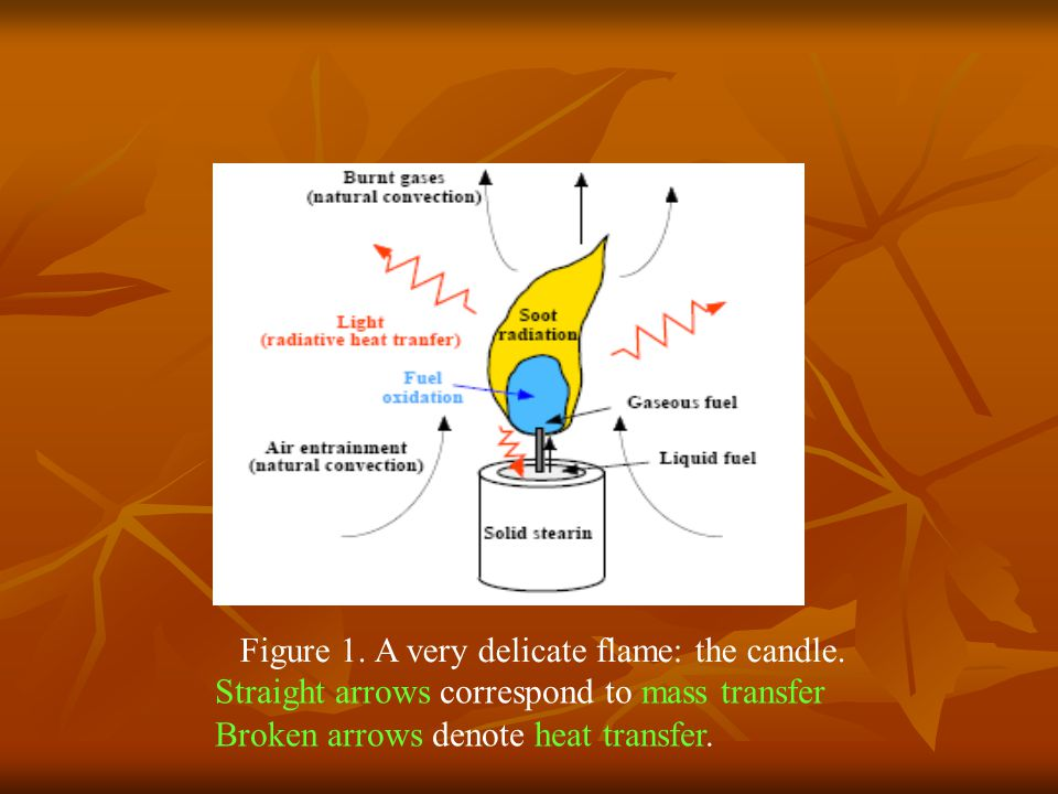 Figure 1. A very delicate flame: the candle.