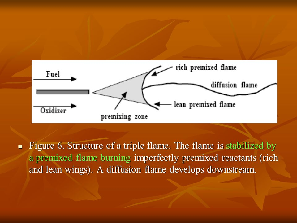 Figure 6. Structure of a triple flame