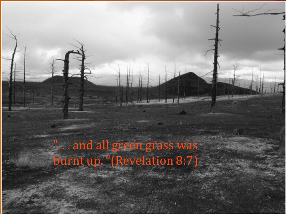 . . . and all green grass was burnt up. (Revelation 8:7)