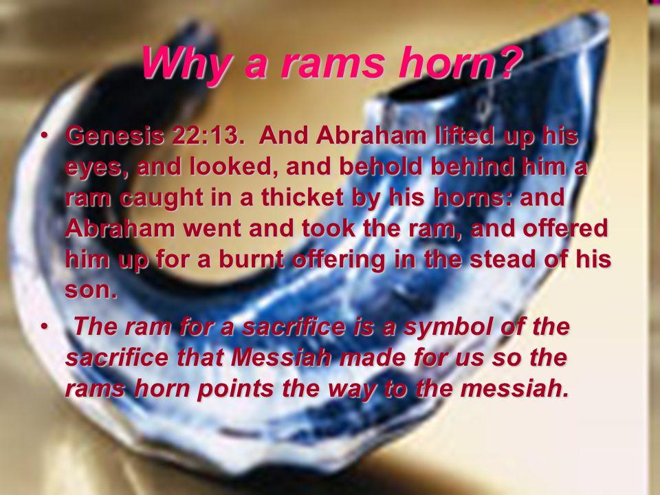 Why a rams horn