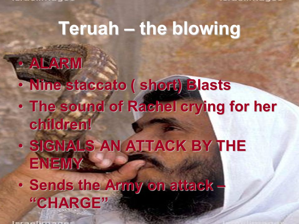 Teruah – the blowing ALARM Nine staccato ( short) Blasts