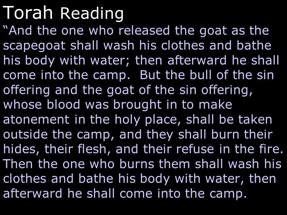 Torah Reading And the one who released the goat as the scapegoat shall wash his clothes and bathe his body with water; then afterward he shall come into the camp.