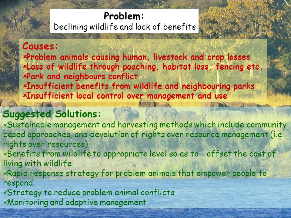 Declining wildlife and lack of benefits
