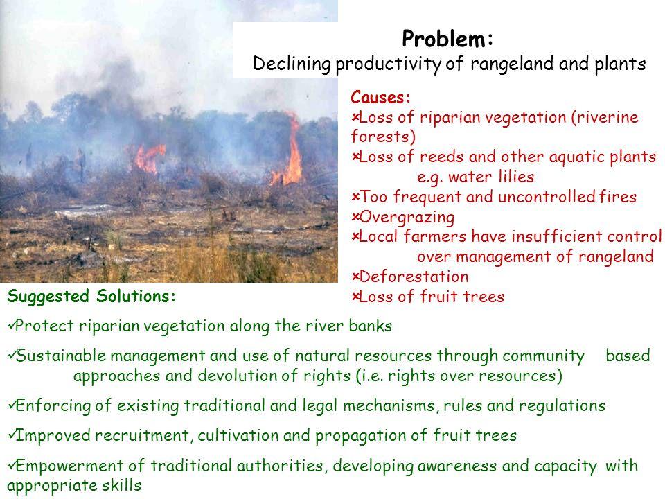Declining productivity of rangeland and plants