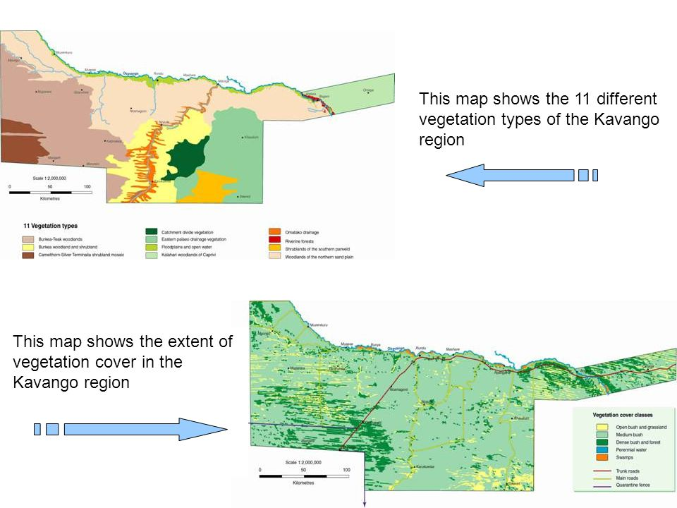 This map shows the 11 different vegetation types of the Kavango region
