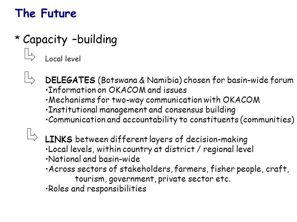 The Future * Capacity –building