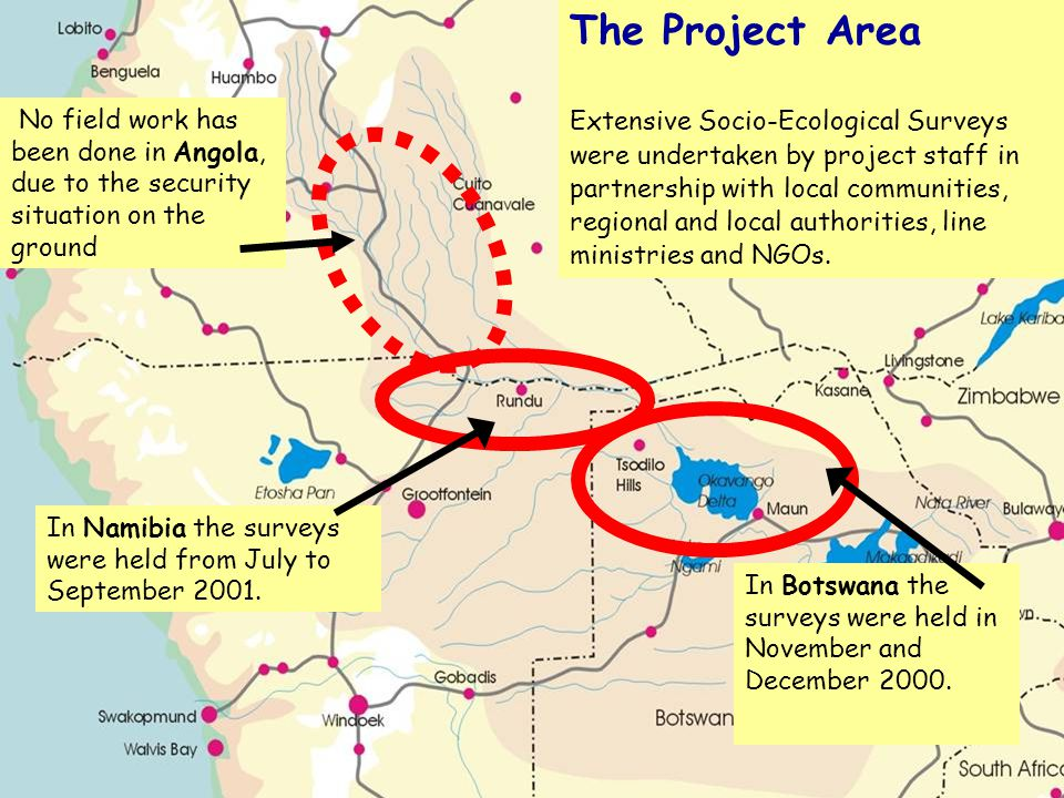 The Project Area