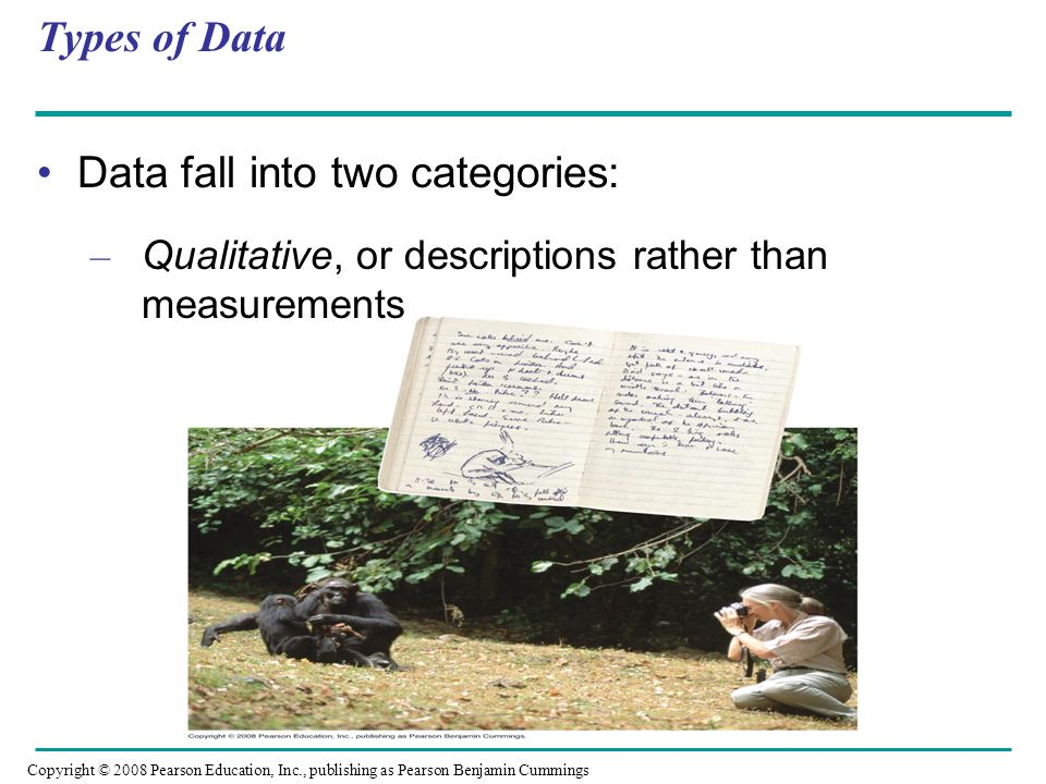 Data fall into two categories: