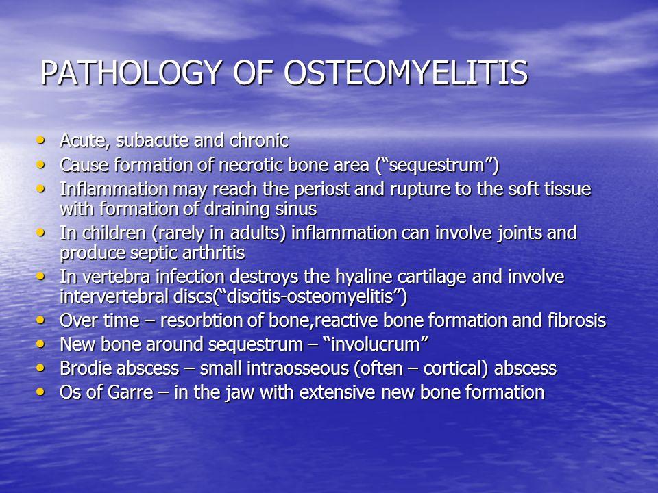 PATHOLOGY OF OSTEOMYELITIS