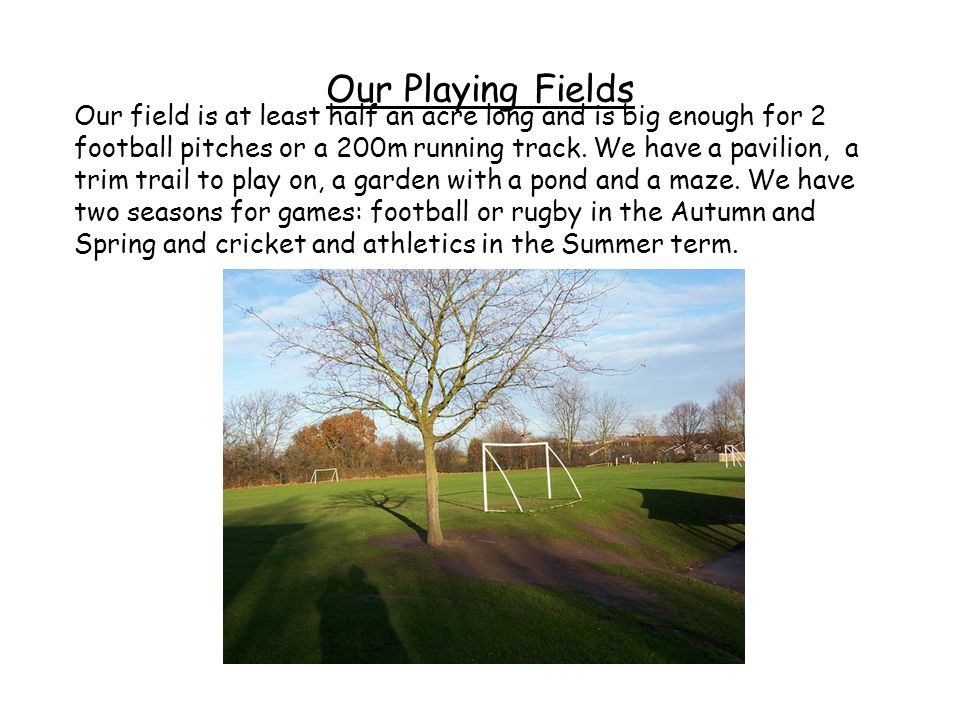 Our Playing Fields