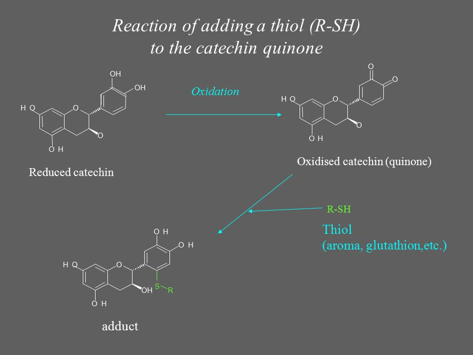 Reaction of adding a thiol (R-SH) to the catechin quinone