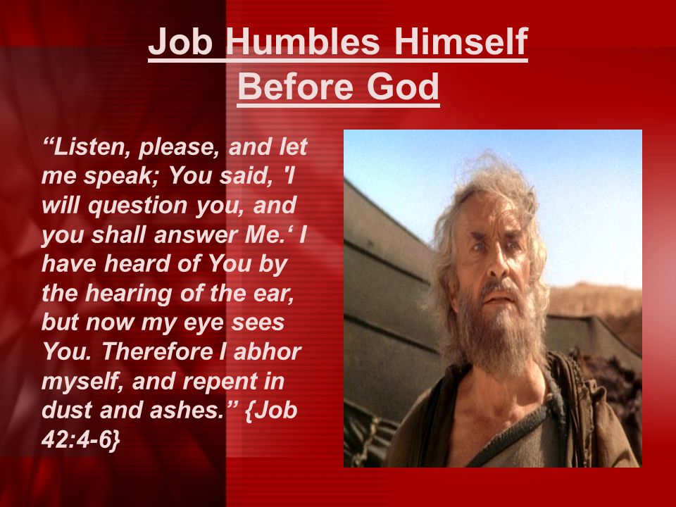 Job Humbles Himself Before God