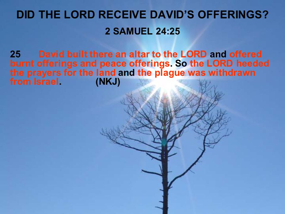 DID THE LORD RECEIVE DAVID'S OFFERINGS
