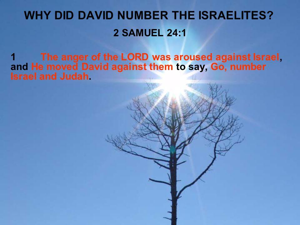 WHY DID DAVID NUMBER THE ISRAELITES