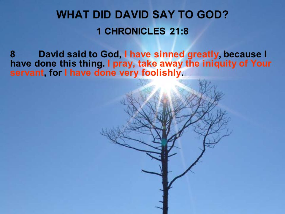 WHAT DID DAVID SAY TO GOD