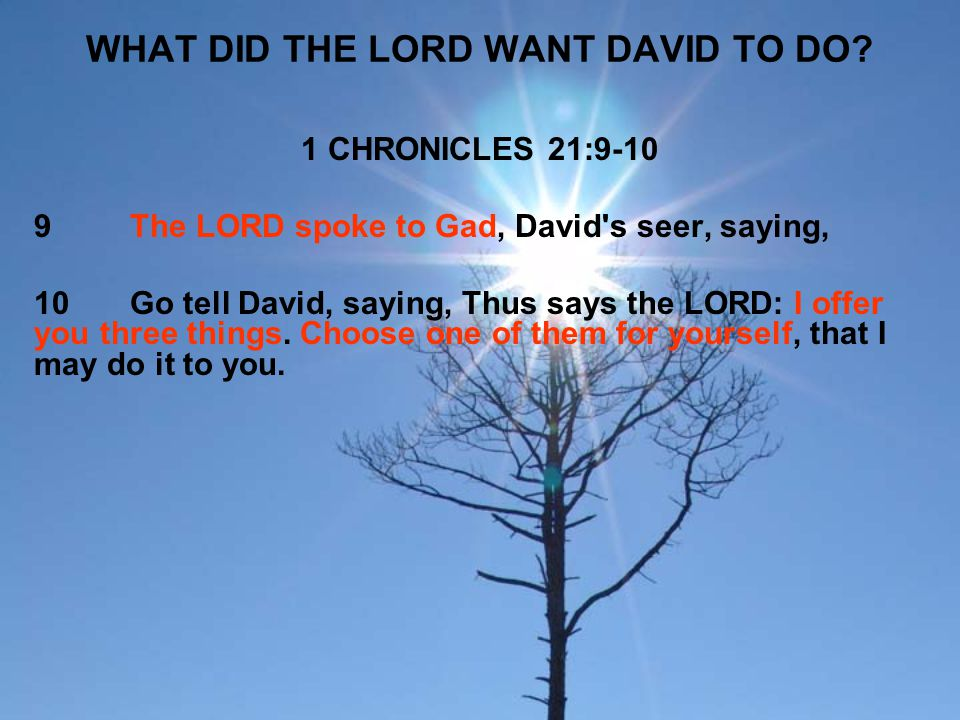 WHAT DID THE LORD WANT DAVID TO DO