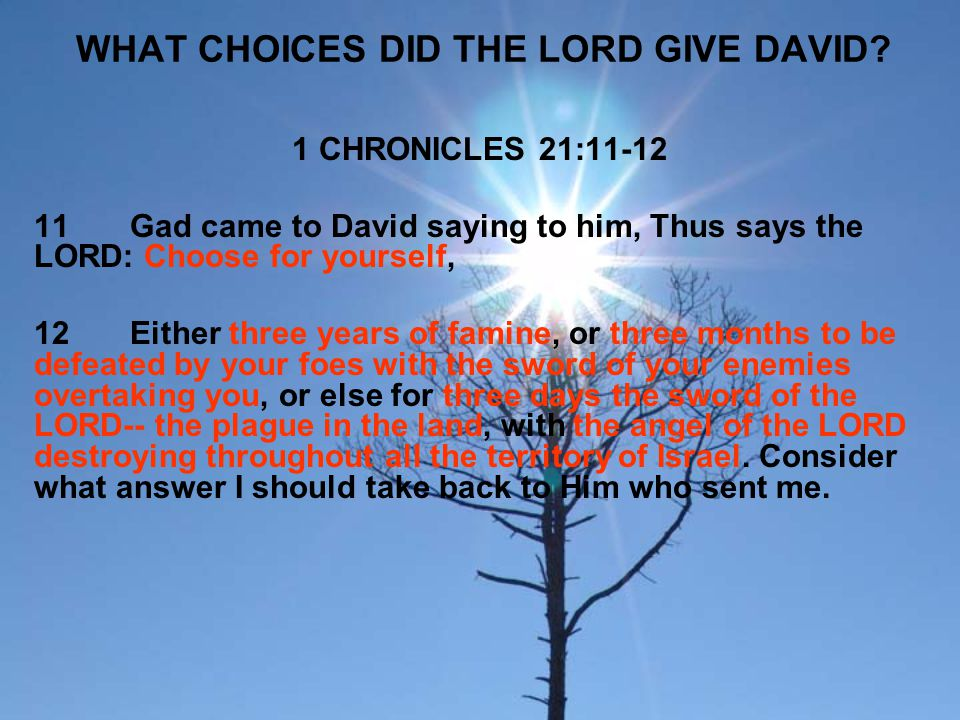 WHAT CHOICES DID THE LORD GIVE DAVID