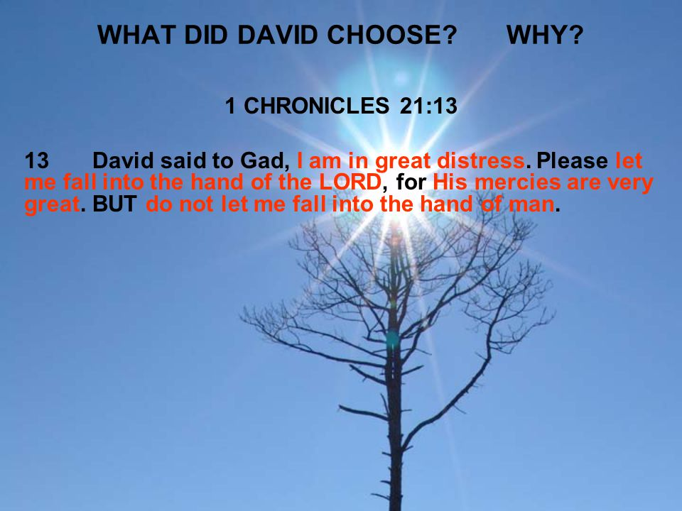 WHAT DID DAVID CHOOSE WHY