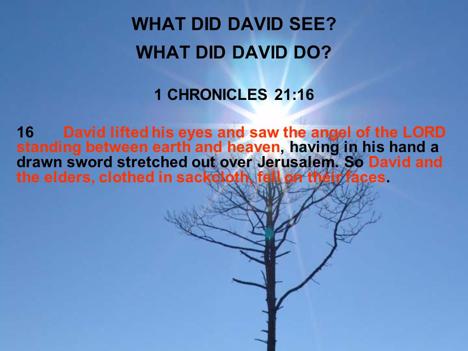 WHAT DID DAVID SEE WHAT DID DAVID DO