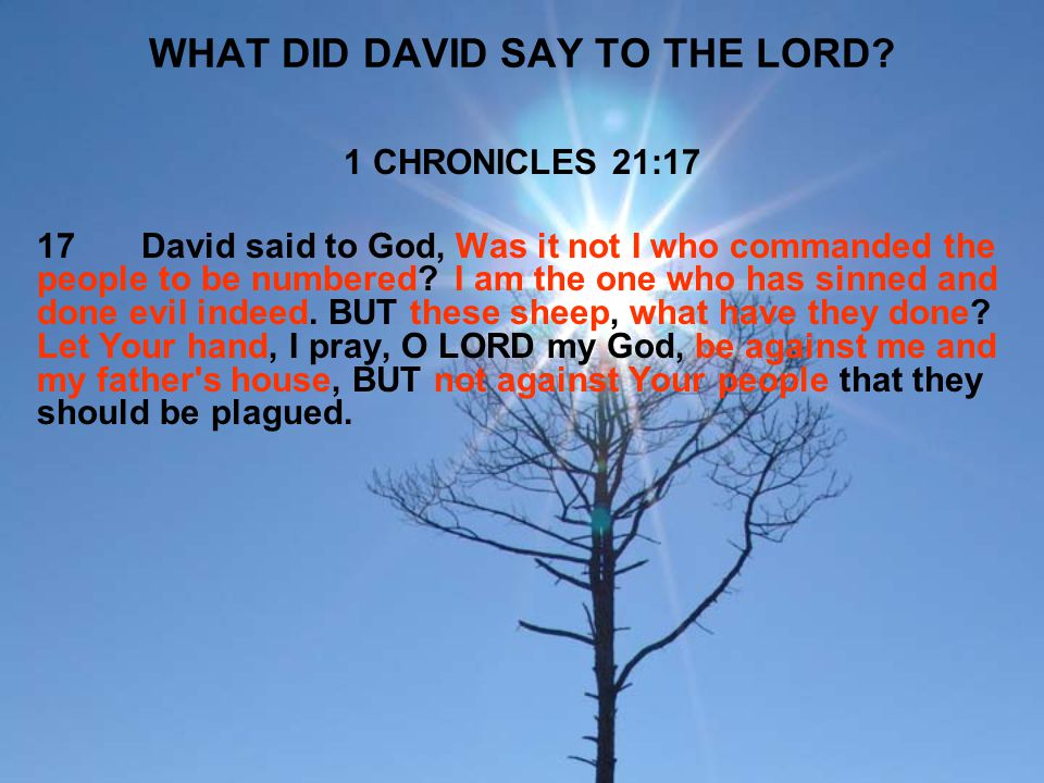 WHAT DID DAVID SAY TO THE LORD
