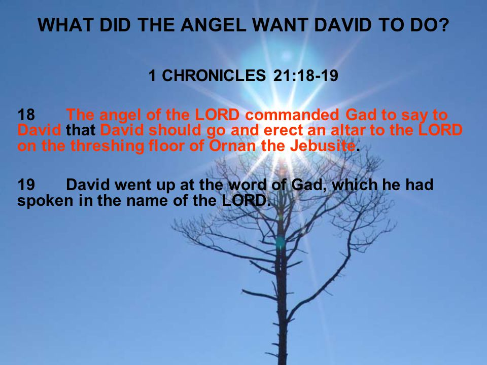 WHAT DID THE ANGEL WANT DAVID TO DO