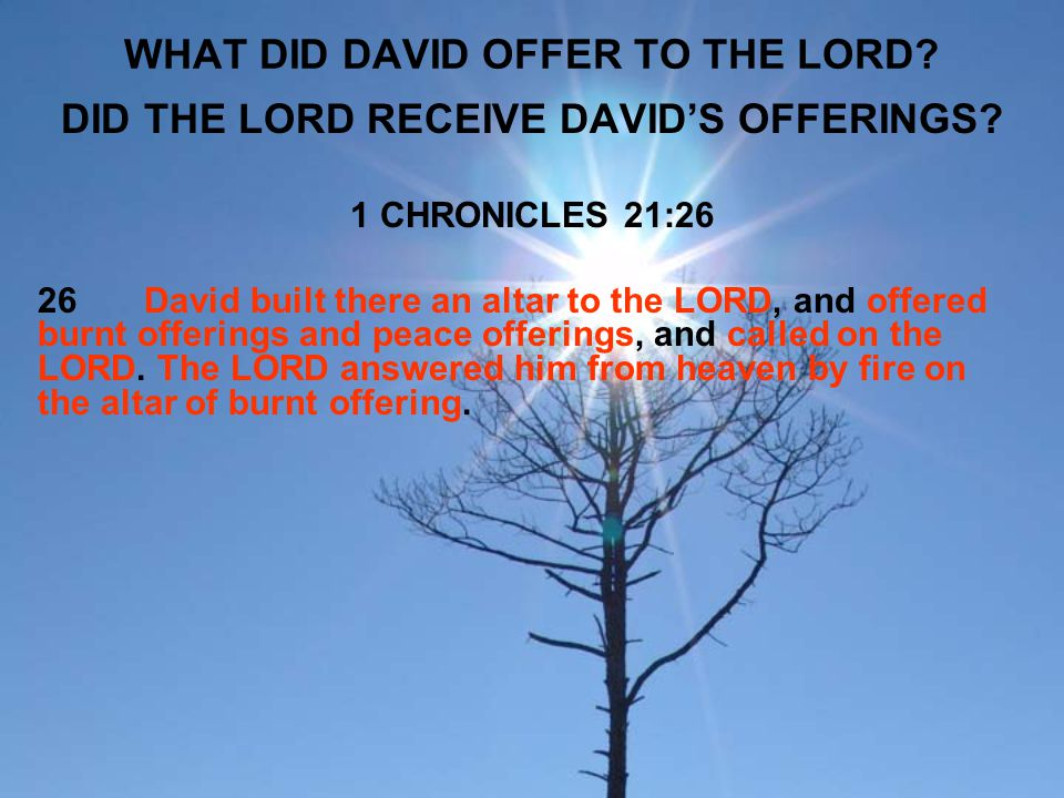WHAT DID DAVID OFFER TO THE LORD