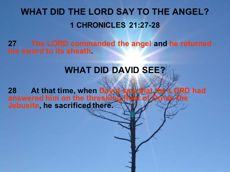 WHAT DID THE LORD SAY TO THE ANGEL