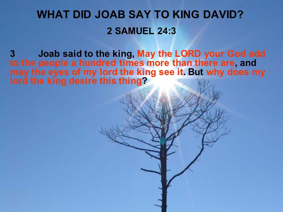 WHAT DID JOAB SAY TO KING DAVID