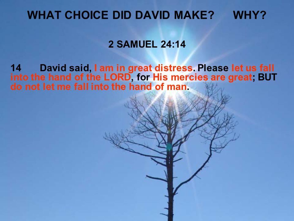 WHAT CHOICE DID DAVID MAKE WHY