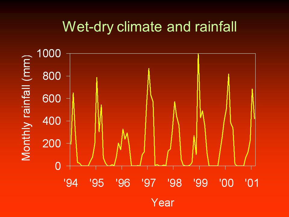 Wet-dry climate and rainfall