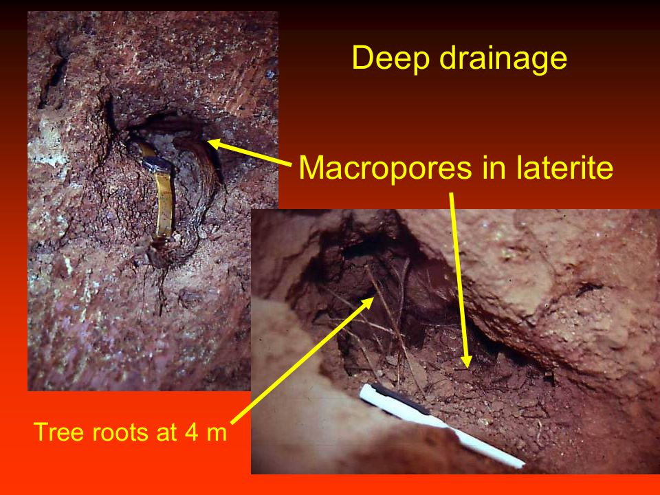 Macropores in laterite