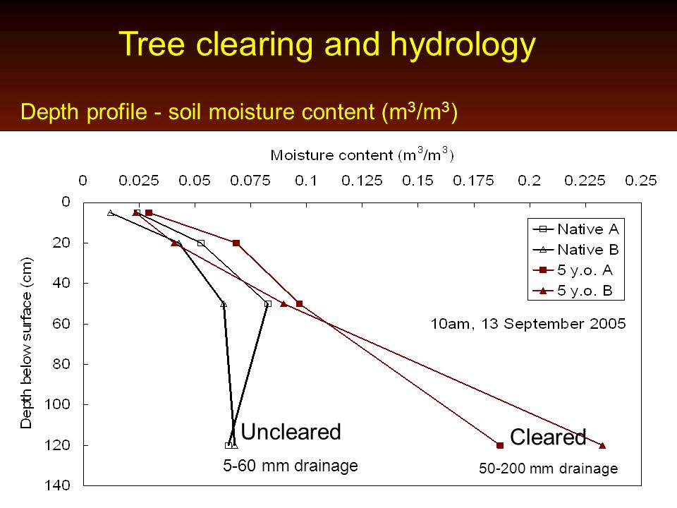 Tree clearing and hydrology