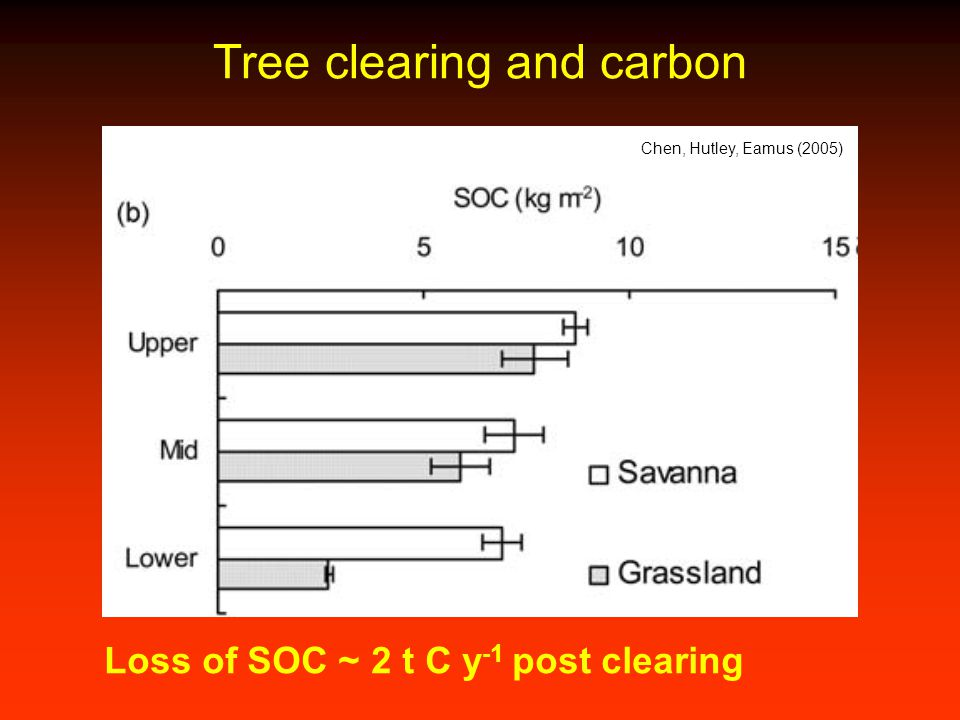 Tree clearing and carbon