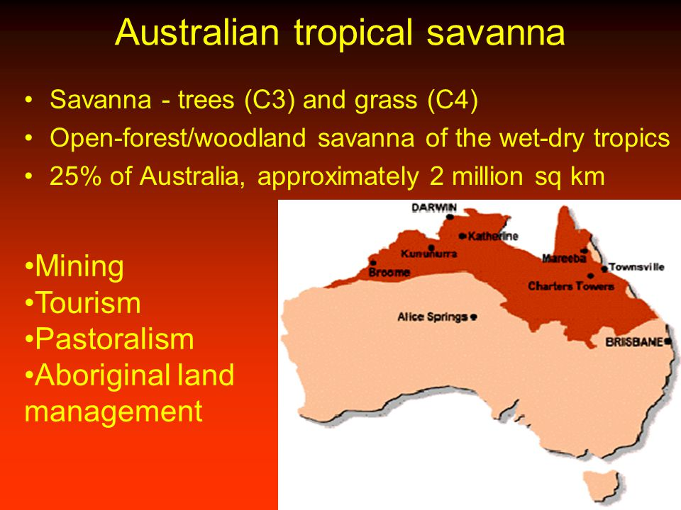 Australian tropical savanna