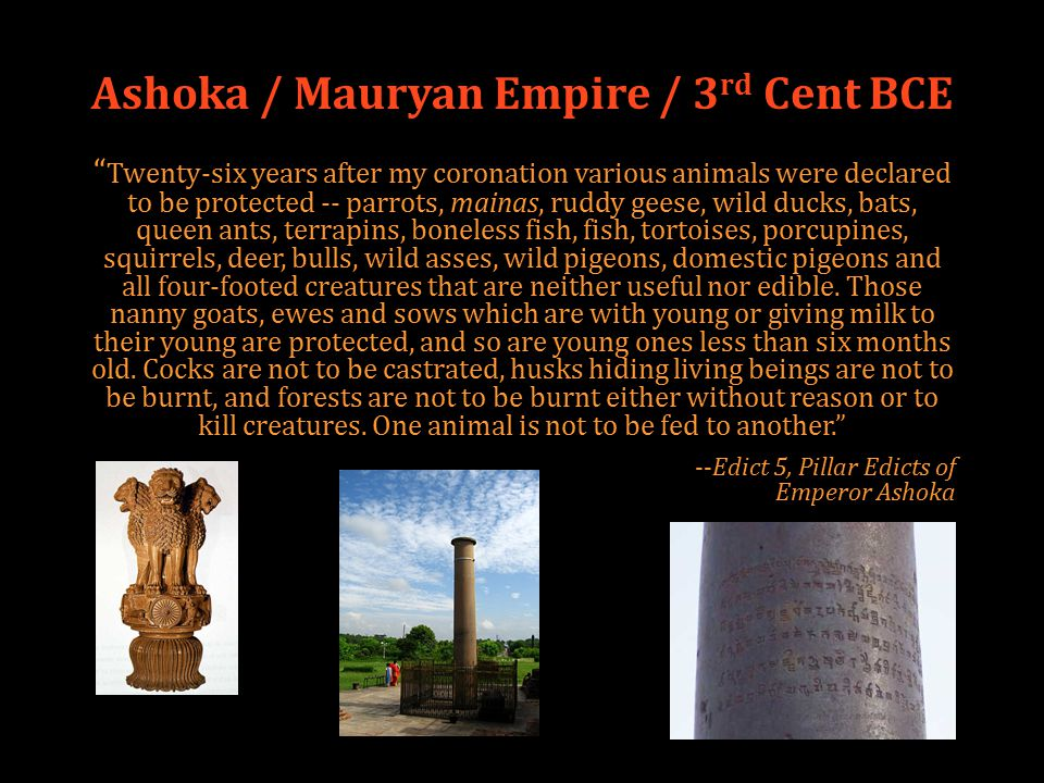 Ashoka / Mauryan Empire / 3rd Cent BCE