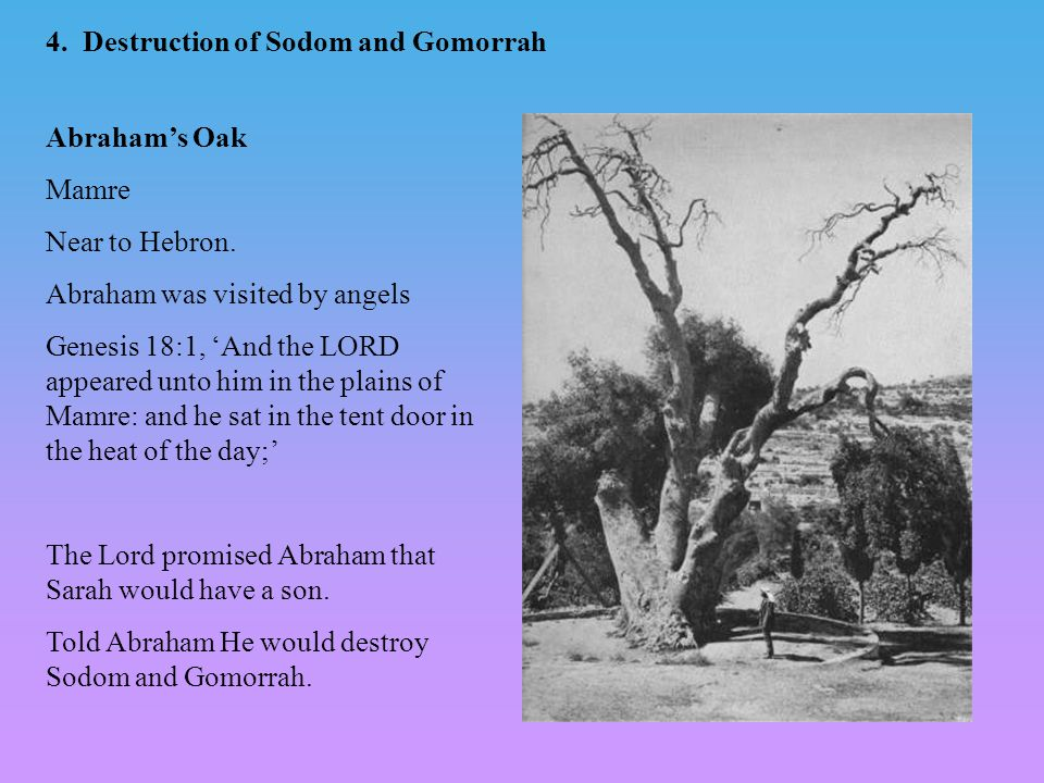4. Destruction of Sodom and Gomorrah