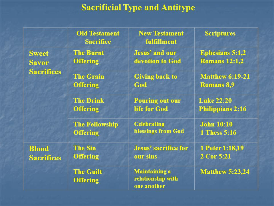 Sacrificial Type and Antitype