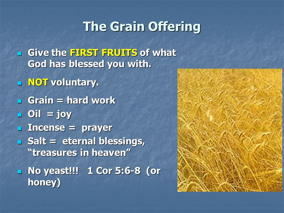 The Grain Offering Give the FIRST FRUITS of what God has blessed you with. NOT voluntary. Grain = hard work.