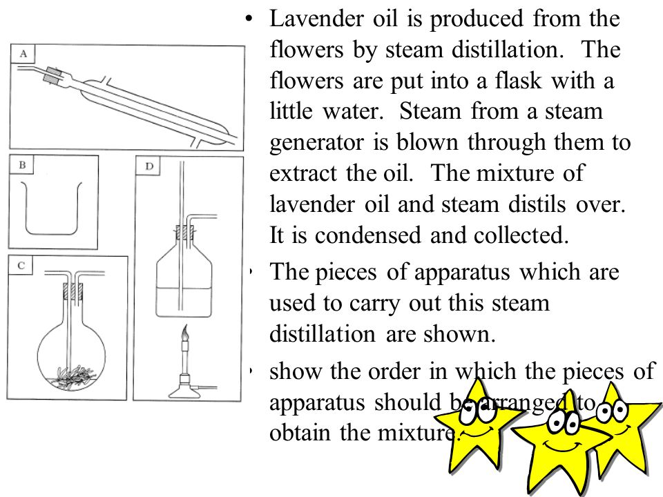 Lavender oil is produced from the flowers by steam distillation